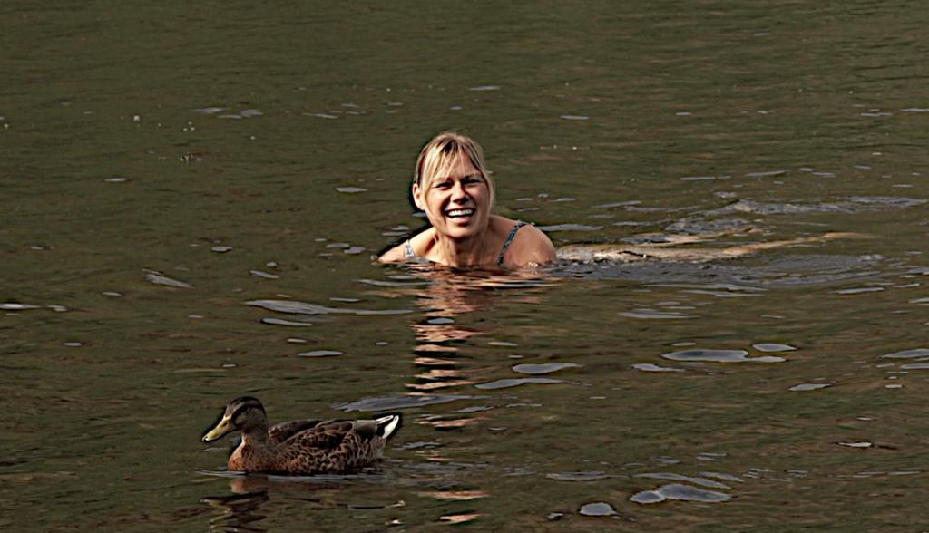 Wild swim with a local!